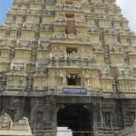 南インド研修旅行⑥