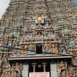 南インド研修旅行⑧